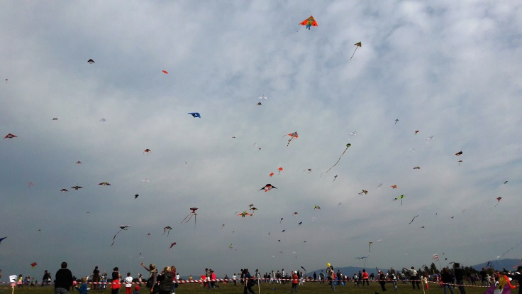A small portion of the sky during Kite Day in Kosice.